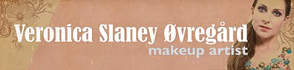 slaney makeup banner 02